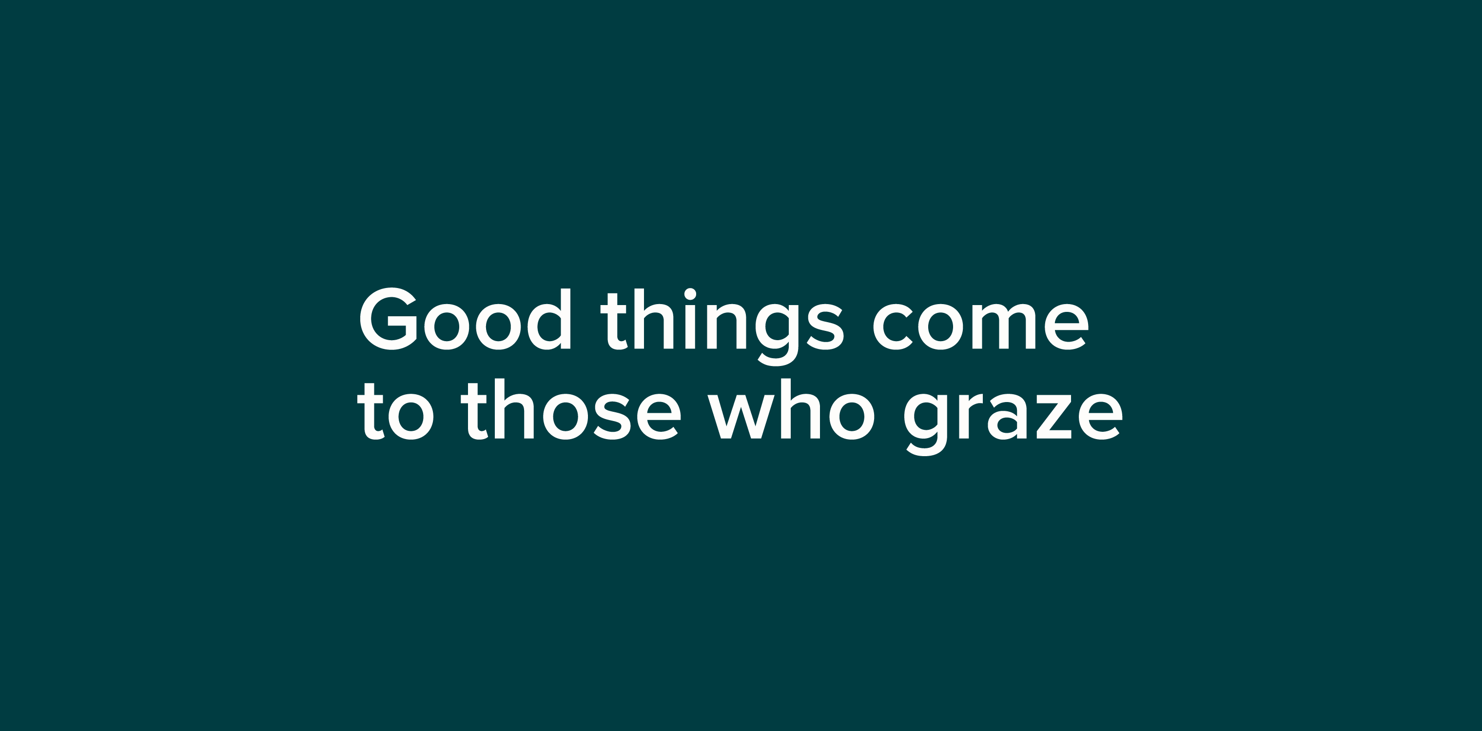 White 'Good things come to those who graze' on a teal background to reinforce the Grazy brand promise