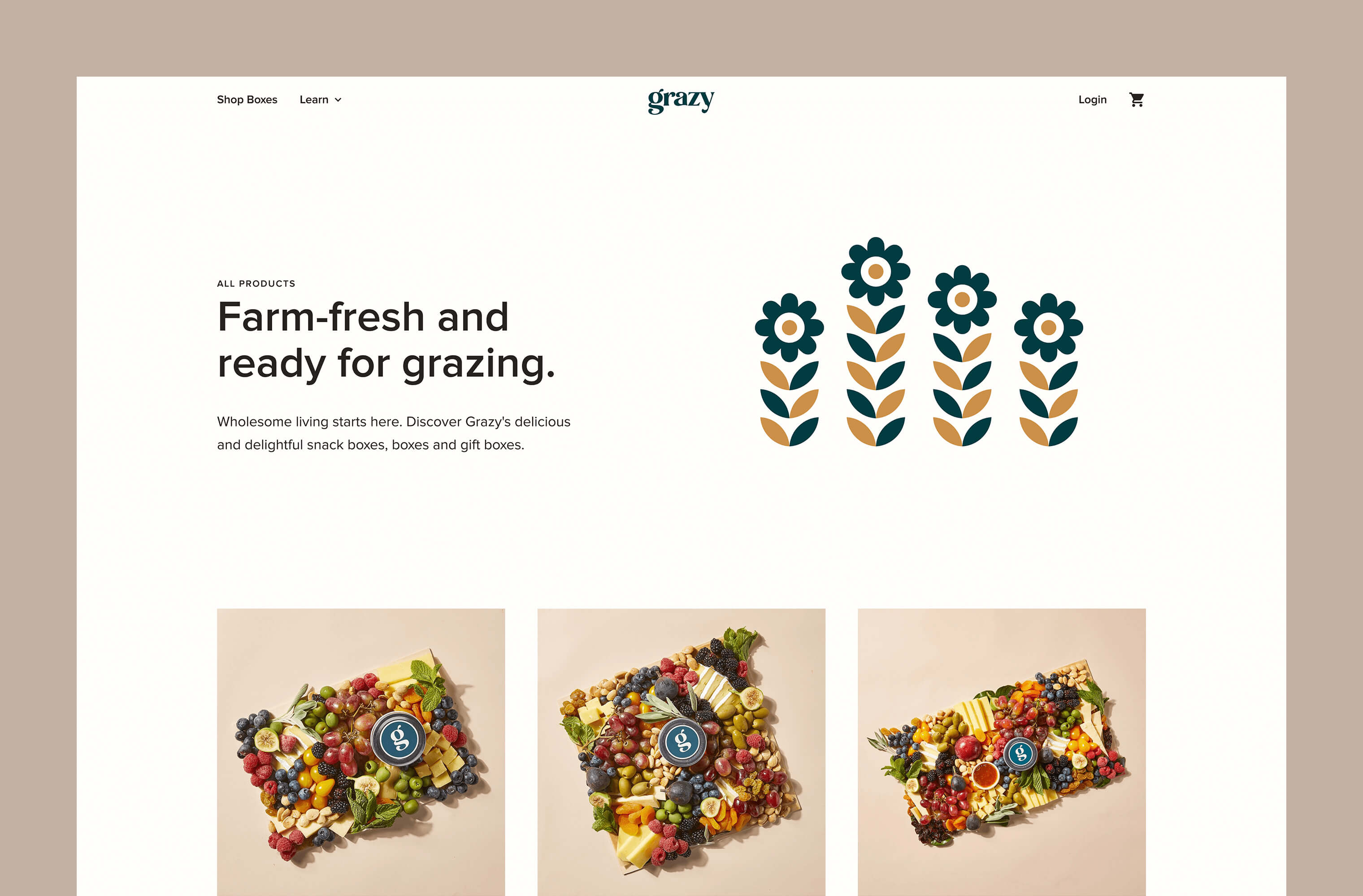 Desktop 'Product Archive' page for the Grazy website